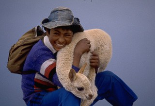 Boy with lamb Altiplano